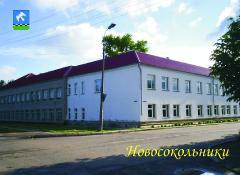 Новосокольническая средняя школа